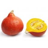 Dýně hokaido - semena 5ks