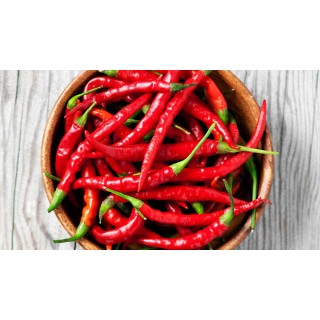 Chilli paprička Cayenne Pepper Red - semena 10ks